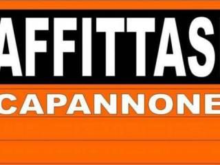 Immobile Affitto Monteforte d'Alpone