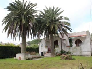 Foto - Villa unifamiliare via Terracina, San Felice Circeo