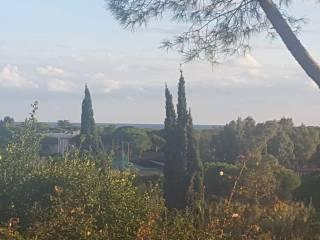 Foto - Trilocale Località La Serra, Campo nell'Elba