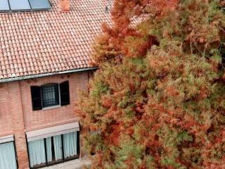 Foto - Villa, ottimo stato, 533 mq, Piumazzo, Castelfranco Emilia