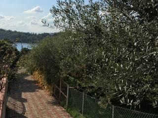 Foto - Terreno edificabile residenziale a Tortolì