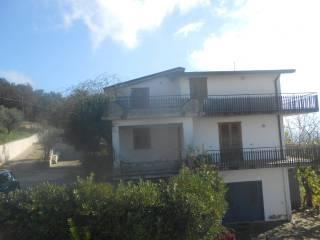 Foto - Villa Contrada Palmolite, Montemiletto