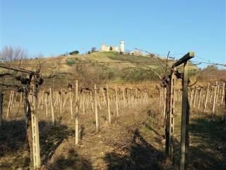 Foto - Terreno agricolo in Vendita a Monteodorisio