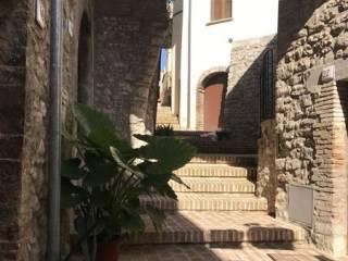 Foto - Quadrilocale ottimo stato, piano terra, Montefranco