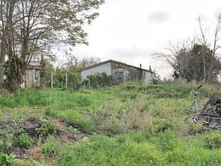 Foto - Terreno edificabile residenziale a Montalto di Castro