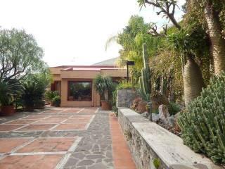 Foto - Villa, ottimo stato, 350 mq, Capo Gallo, Palermo