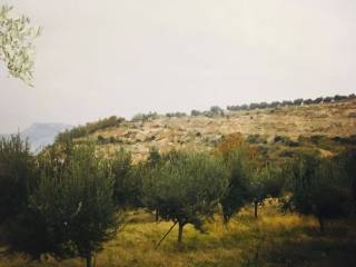 Foto - Terreno agricolo in Vendita a Abbateggio