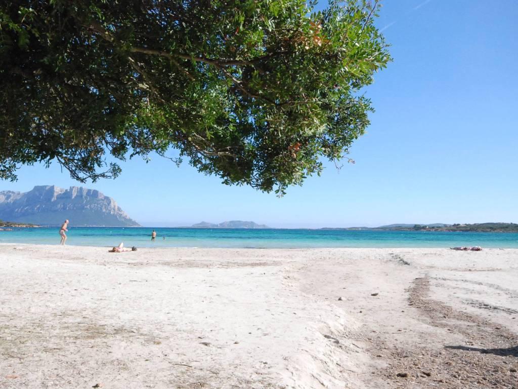 foto spiaggia Villa a schiera via Nazionale 22D, Olbia