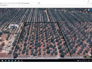 Foto - Terreno agricolo in Vendita a Corato