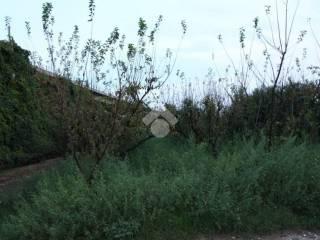 Foto - Terreno edificabile residenziale a Aversa