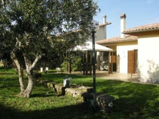 Foto - Villa Strada Provinciale Beccacceto, Sutri