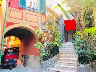 Foto - Casa indipendente 118 mq, ottimo stato, Monterosso al Mare