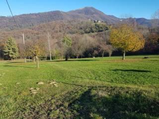 Foto - Terreno agricolo in Vendita a Scanzorosciate