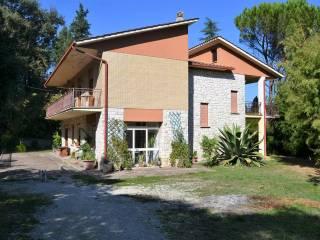 Foto - Villa Strada Provinciale Magliano Sabina, Orte Scalo, Orte