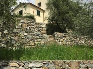 Foto - Villa, ottimo stato, 200 mq, Castiglione Chiavarese