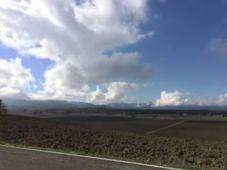 Foto - Terreno agricolo in Vendita a Scarperia e San Piero