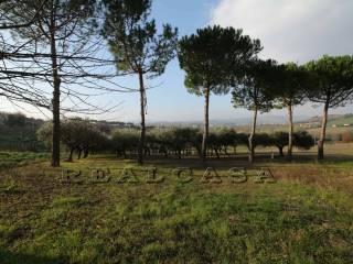 Foto - Terreno agricolo in Vendita a Camerano