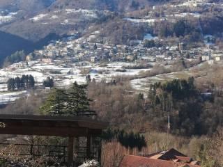 Foto - Terreno agricolo in Vendita a Dizzasco