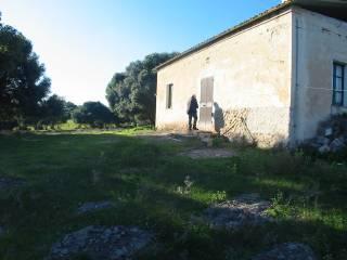 Foto - Rustico / Casale via Cala Lunga, Calasetta