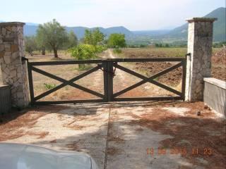 Foto - Terreno agricolo in Vendita a Raviscanina