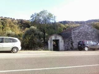 Foto - Terreno agricolo in Vendita a Bonorva