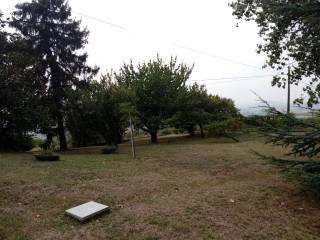Foto - Villa Strada Moretto Inferiore 1, Villadeati