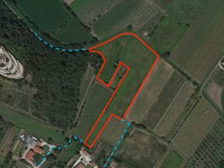Foto - Terreno agricolo in Vendita a Galzignano Terme