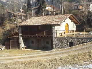 Foto - Terreno agricolo in Affitto a Castione della Presolana