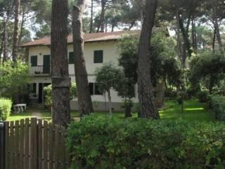 Foto - Villa bifamiliare via del Fontino 28, Castiglione della Pescaia