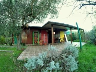 Foto - Rustico / Casale via Rovane, Montopoli di Sabina