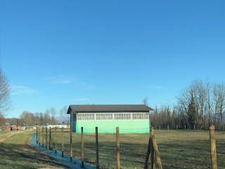 Foto - Terreno agricolo in Affitto a Castelseprio