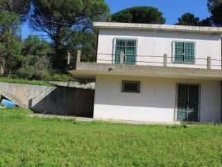Foto - Villa Contrada Campi-Castanea delle Furie, Castanea - Salice, Messina