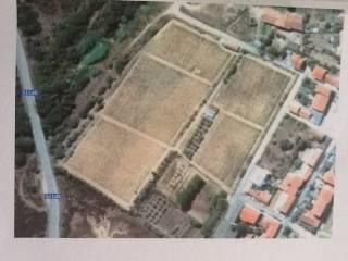 Foto - Terreno agricolo in Vendita a Luogosanto