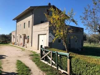 Foto - Rustico / Casale via Roma, San Giovanni in Marignano