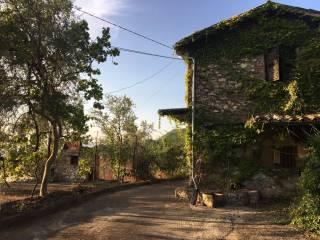 Foto - Rustico / Casale via Finocchieto, Poggio Mirteto