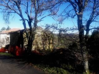 Foto - Rustico via della Botte, Qualto, San Benedetto Val di Sambro