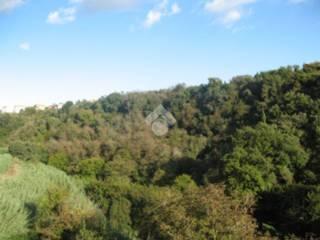 Foto - Bilocale vicolo del gobbino, 7, Cellere