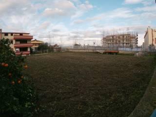 Foto - Terreno agricolo in Affitto a Lusciano