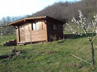 Foto - Terreno agricolo in Vendita a Vestignè