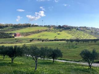 Foto - Terreno agricolo in Vendita a Sciacca