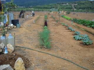 Foto - Terreno agricolo in Vendita a Porto Torres