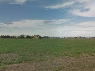 Foto - Terreno edificabile industriale a Felino