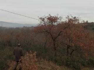 Foto - Terreno agricolo in Vendita a Giano dell'Umbria