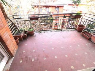 Case e appartamenti via raffaele cappelli Roma - Immobiliare.it da666b47cfda