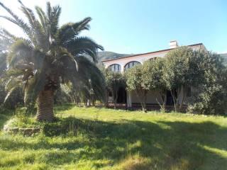 Foto - Villa unifamiliare Località Sarrala, Tertenia