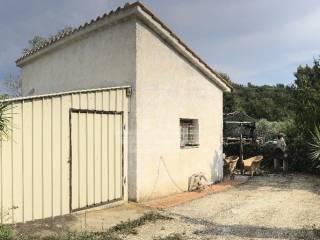 Foto - Terreno agricolo in Vendita a Piombino