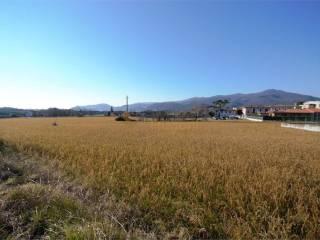 Foto - Terreno edificabile residenziale a Muscoline