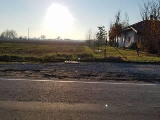 Foto - Terreno edificabile residenziale a Busseto