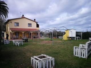 Foto - Casale Strada Comunale degli Affitti, La Sdriscia, Piombino