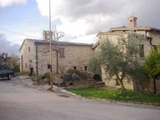 Foto - Rustico frazione Collaiello 13, Gagliole